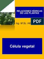 Relaciones Hidricas Plantas (autotrodas)