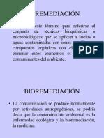 BioremediacionTrans.