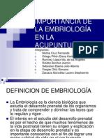 Exposicic3b3n 1 Aplicaciones de La Embriologc3ada en La Acupuntura1