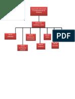Organizacion Como Usuarios
