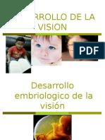 Desarrollo de La Vision y La Audicion