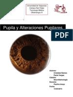 Pupila y Alteraciones Pupilares Final