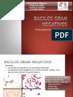 Bacilos Gram Negativos.pptx