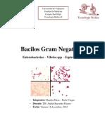 trabajo micro Bacilos Gram Negativos.docx