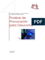 pruebas de provocacion.docx