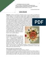 Loscelos.pdf