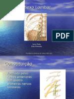 Plexo Lombar - Anatomia