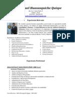 Curriculum Vitae (2)