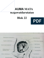 Blok 22 Trauma Mata Kegawatan Darutan Dr. Hamdanah