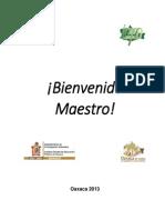 Bienvenido Maestro 2013