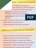 Tema 14 Nutrición en Animales