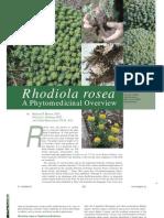 Rhodiola Roseo Herbalgram