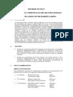 Informe Evaluacion de Competencias