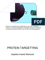 5.Protein Targetting