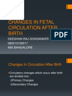 Changes in Fetal Circulation After Birth