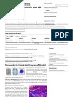Tentang Jenis, Fungsi Dan Kegunaan Silica Gel « Bioindustries Bioindustries