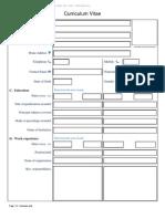 Comprehensive CV Format