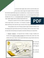 40065219-Konsep-Hidrogeologi