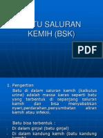 BATU SALURAN KEMIH (BSK).ppt