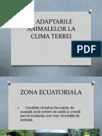 Adaptarile Animalelor La Clima Terrei