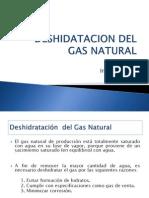 Presentacion 11 . DESHIDARTACION DEL GAS NATURAL.pptx