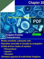 protist-apbio-1204208110771478-5