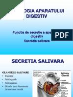Functia Secretorie a Salivei