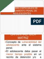 2.1.Normas Especiales de Procedimiento Penal de Adolescentes