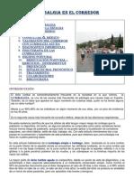 Lumbalgias.pdf