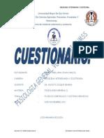 Cuestionario i y II (Zerna Orellana Juan Carlos)