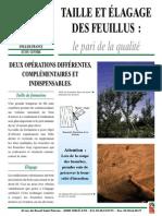 TAILLE_ELAGAGE_FEUILLUS.pdf