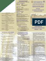 Triptico de Residentado Medico 2014