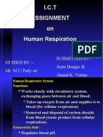 I.C.T ASSIGNMENT on Human Respiration