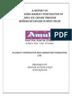 36852318 Deepak Final Report