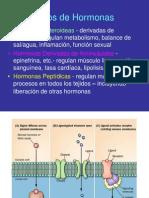 Receptores Nucleares(Copia)
