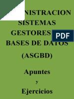 administracion-de-bases-de-datos_apuntes-v2-1.pdf