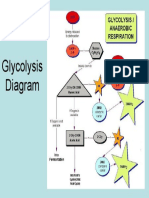 Glycolysis Diagram