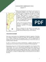 cuenca carrenleufu y pico.pdf