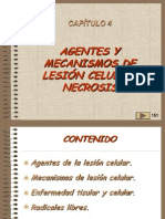 04, Agentes y Mecanismos de Lesion Celular