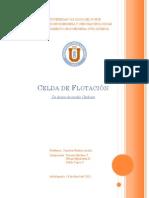 Diseño Mecanico de Equipos de Proceso (1.2011) - Tarea (Y. Michea - F. Sepúlveda - P. Tapia)-1