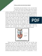 Anatomi Dan Fisiologi Kelenjar Tiroid Dan Paratiroid