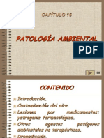 16, PATOLOGIA AMBIENTAL