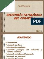 18, Patologia Del Corazon