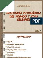 23, Patologia de Higado y v.b.