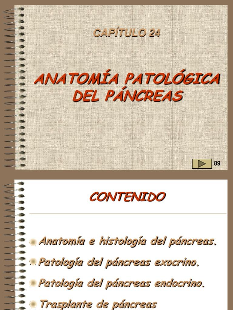 24,Patologia Del Pancreas