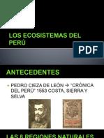 Las 11 eco regiones del Perú.pptx