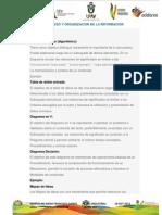 Ingreso y Organizacion de La Informacion