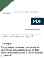 Presentación Gráfica. de La Modificación Y Convalidación de Actas de Registro Civil