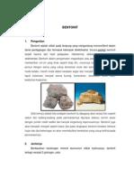 95142326-Bentonit-Fix.pdf