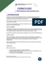 FORMATO IEEE1